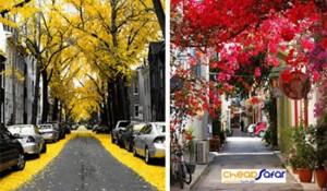 pretty-streets-3