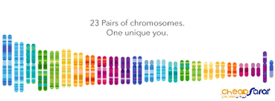 23andMe-2